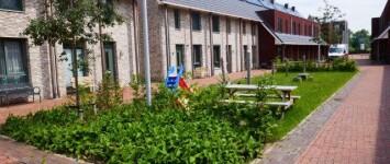 Speelplek Rosariumstraat - Foto_Rosariumstraat_juni_2019_mijn_wijkplan