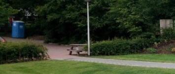 Mooie haag bij picknickbank - Papaverweg_48_kb