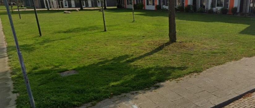 grasveld